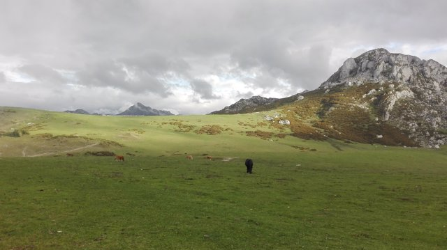 Entorno de los Lagos de Covadonga, turismo en Asturias