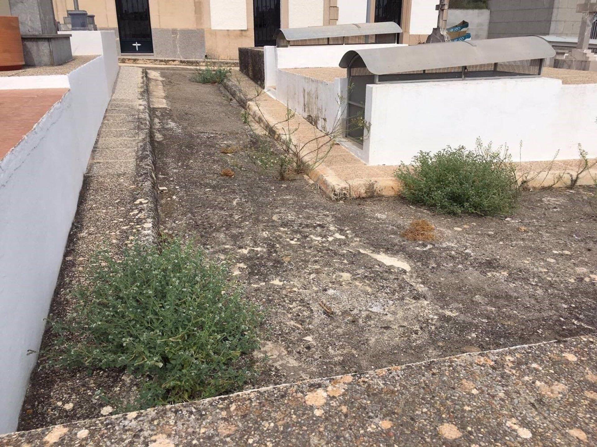 El PP denuncia el 'deplorable estado de abandono' del cementerio de Sineu