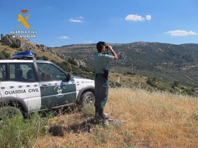 Un agente durante el servicio de vigilancia