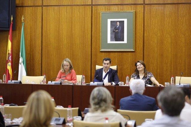 Reunión del grupo parlamentario del PP-A