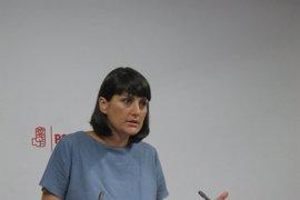 PSOE pide al ministro de Fomento que dé explicaciones sobre el soterramiento y que resuelva el problema del muro