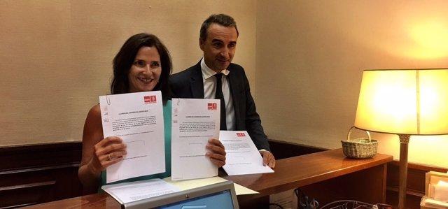 El PSOE registra reformas de la LOMCE en el Congreso