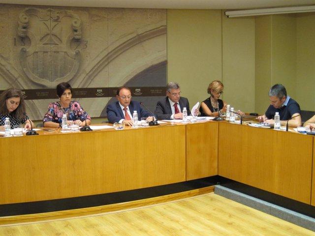 Ruiz Alejos Comparece En El Parlamento