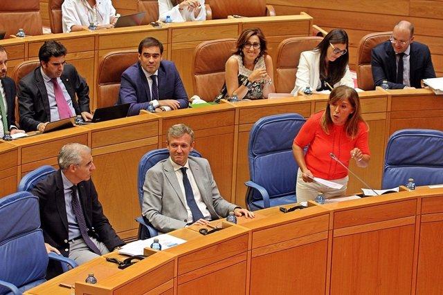 La conselleira, en el pleno