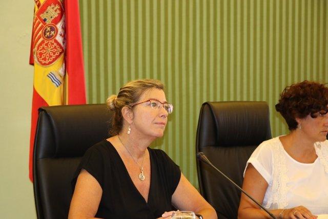 La consellera de Salud, Patricia Gómez, en una comisión parlamentaria