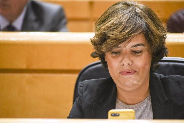 Santamaría mirando el móvil en la sesión de control al Gobierno en el Senado