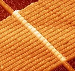 Imagen de un circuito con 17 memristores