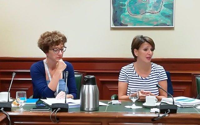 La portavoz de En Marea Yolanda Díaz presenta la Ley de Igualdad Retributiva