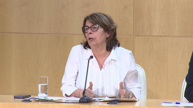 Sabanés defiende el papel de Carmena para Ahora Madrid