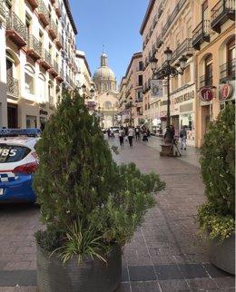 Bolardos y coche de Policía Local en la calle Alfonso I