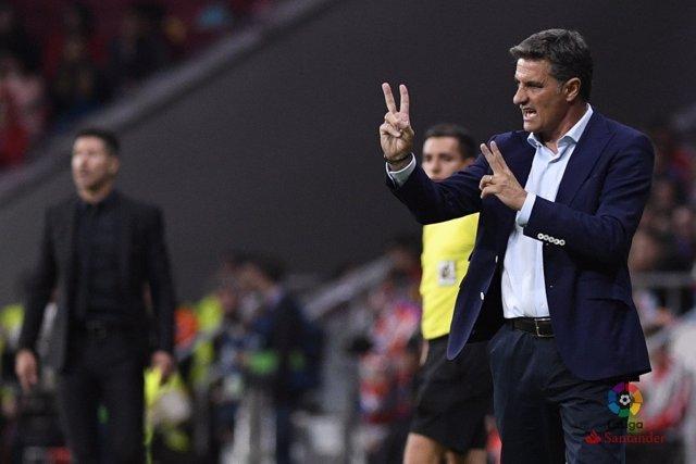 Míchel, entrenador del Málaga