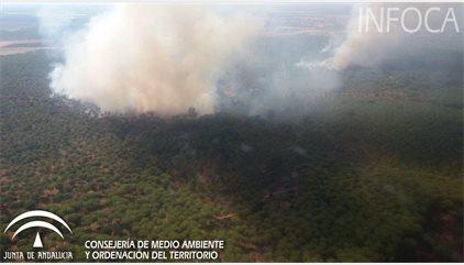 Declarado un incendio en el paraje natural de Dehesa Boyal de Villamanrique (Sevilla)
