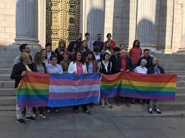 Asociaciones LGTBI y diputados ante el Congreso