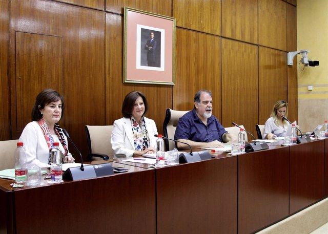 La consejera María José Sánchez Rubio comparece en la comisión de Igualdad