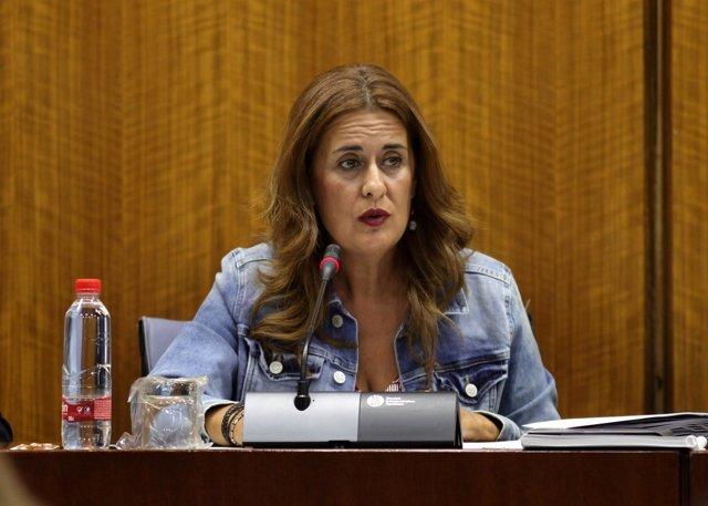 La consejera andaluza de Educación, Sonia Gaya, en el Parlamento
