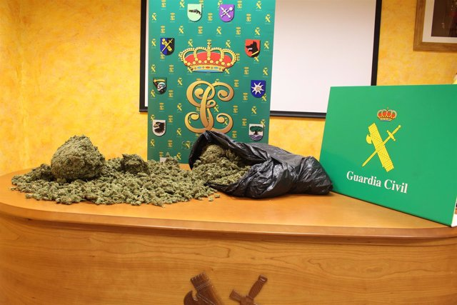 Imagen de la marihuana aprehendida en Fresno