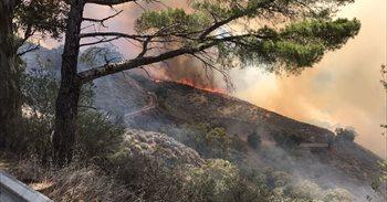 El Cabildo espera que la lluvia ayude a extinguir el incendio en la cumbre de Gran Canaria