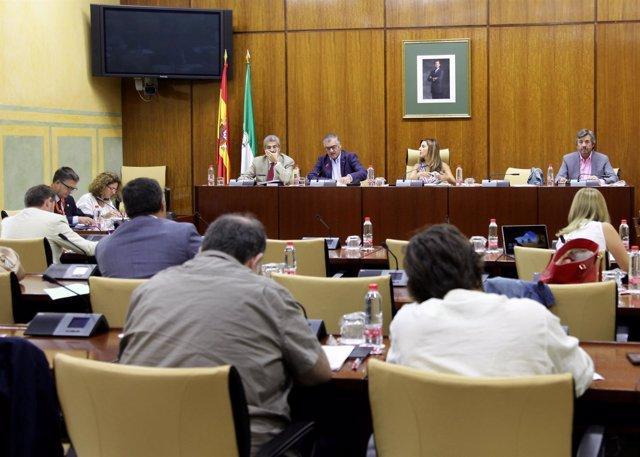 Momento de la comisión de Empleo, Empresa y Comercio