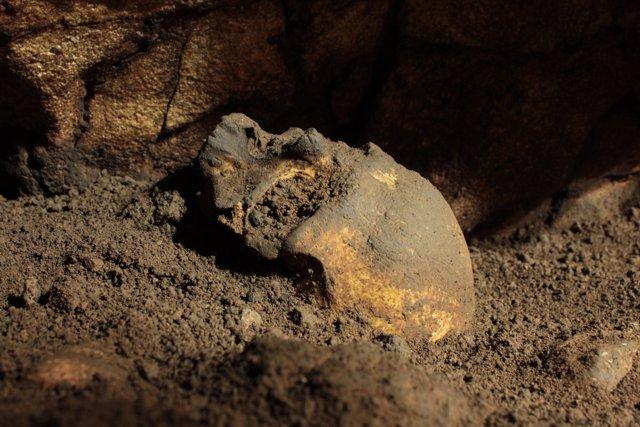 Crani localitzat en la Cova del Randero