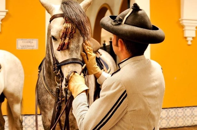 Caballo de la Real Escuela de Arte Ecuestre Jerez