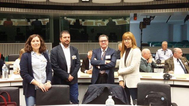 Delegacion de la Diputación Provincial de Teruel en Bruselas