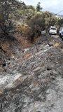 El incendio de Gran Canaria continúa estabilizado y quedan dos sectores por tener bajo control