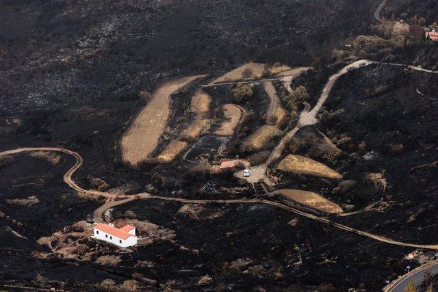 Terreno quemado enel incendio de Gran Canaria