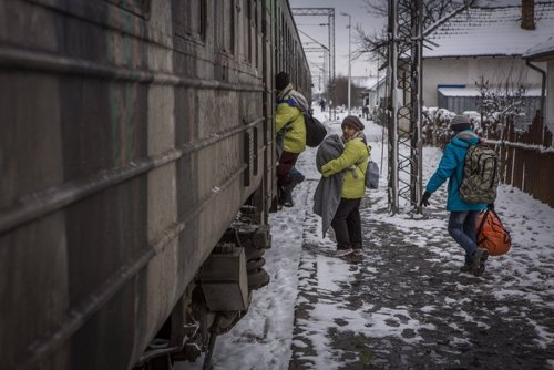 Refugiados sirios con sus hijos en Presevo (Serbia)
