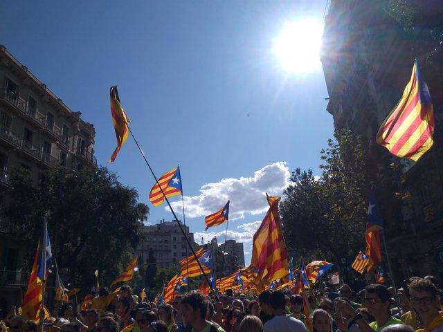 Senyeres y estelades en la manifestación de la Diada