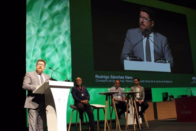 Sánchez Haro inaugura el VI Congreso Gastronómico, en Andalucía Sabor