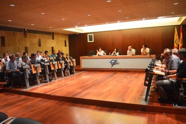 Pleno de la Comarca Comunidad de Teruel