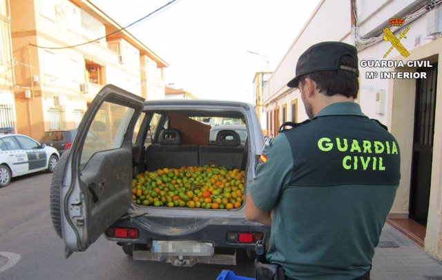 """Remitiendo Np Opc Huelva """"La Guardia Civil Detiene A Tres Personas Y Recupera 50"""