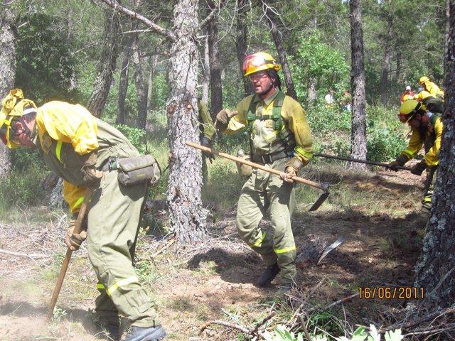 Brigadistas De La Base De Lubia (Soria) En Un Ejercicio Contra El Fuego