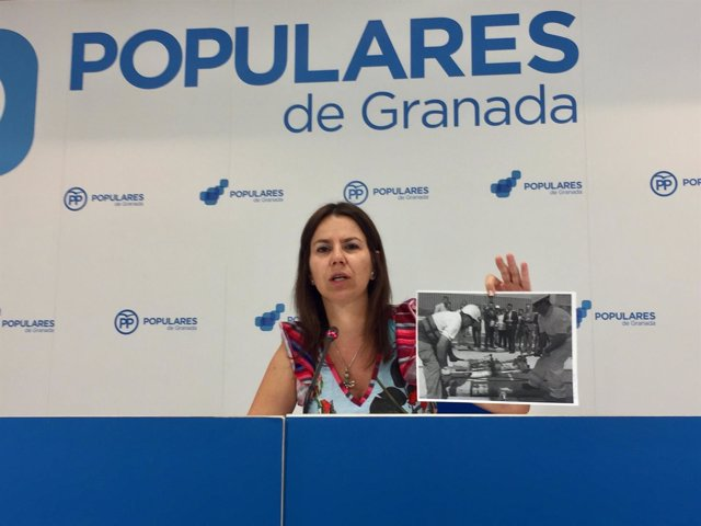 Ana Vanessa García exige la dimisión de Felipe López por el metro