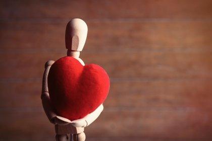 Cómo funciona la 'hormona del amor'