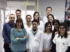 Foto: Las células del tejido adiposo, clave en el inicio de la enfermedad de Crohn (CIBERNED)