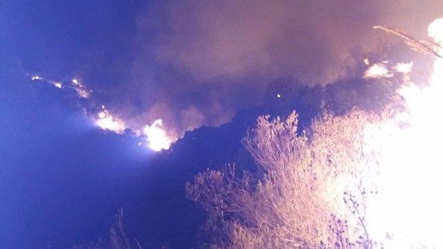 Incendio forestal en Marbella (Málaga)