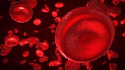 ¿De qué depende la producción de sangre?