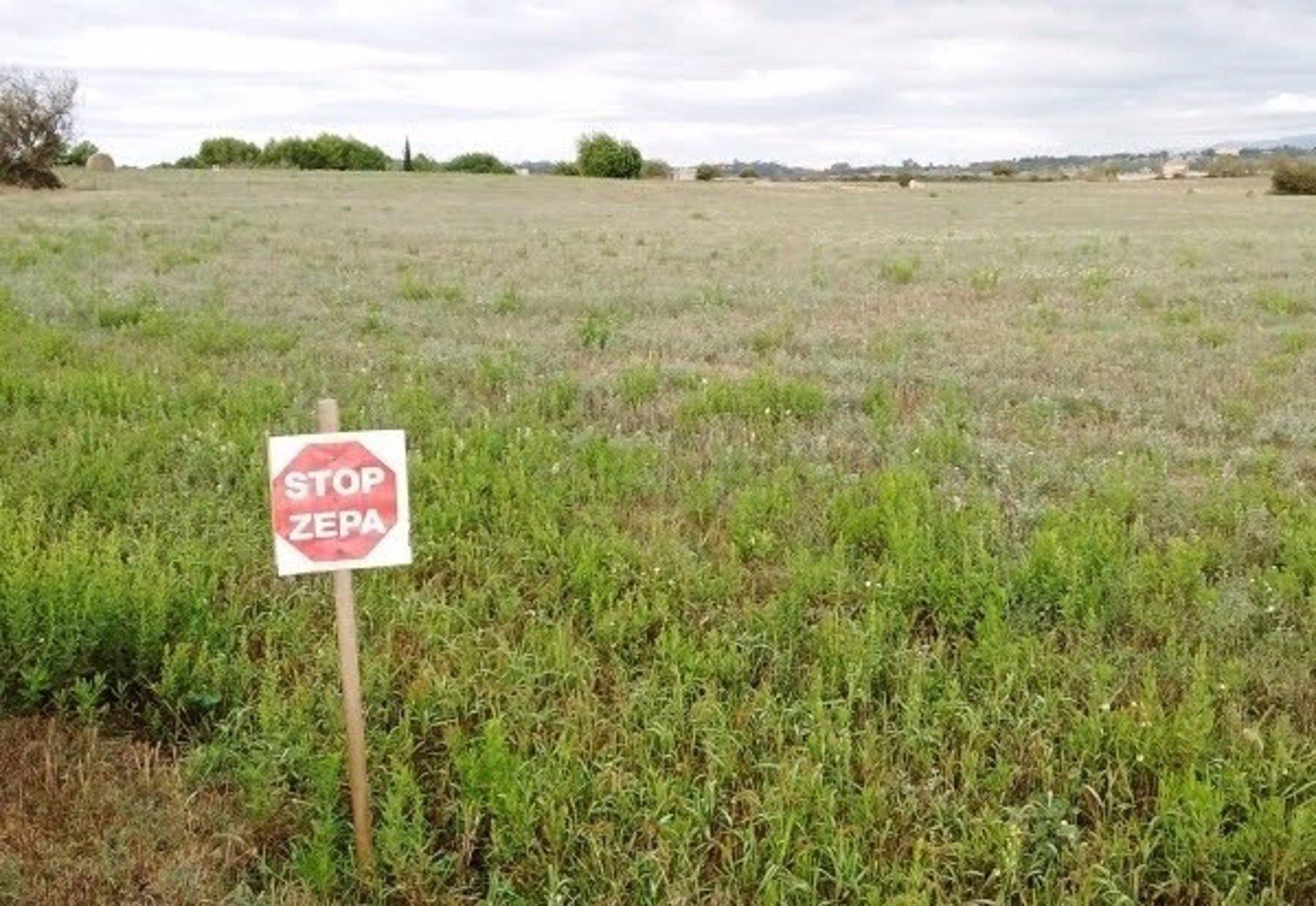 Govern: Las ZEPA no suponen ningún perjuicio a las actividades agrícolas, ganaderas o cinegéticas
