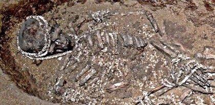 ADN revela redes de apareamiento frente a la endogamia hace 34.000 años