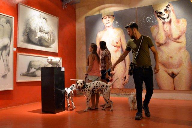 Perros y propietarios dentro del MEAM