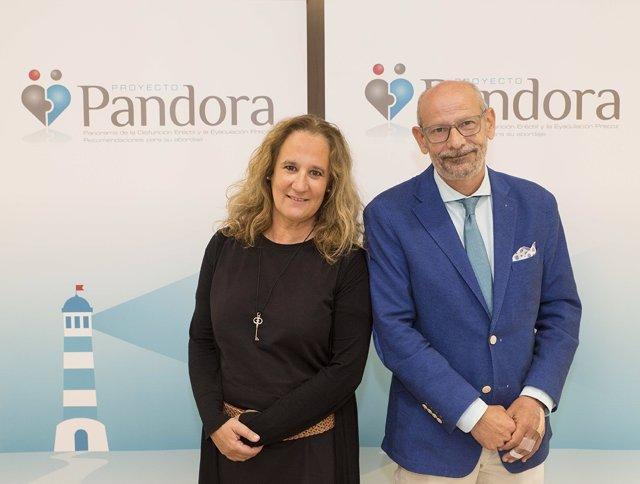 Proyecto Pandora