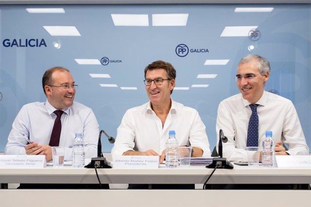 Feijóo preside el comité de dirección del PPdeG