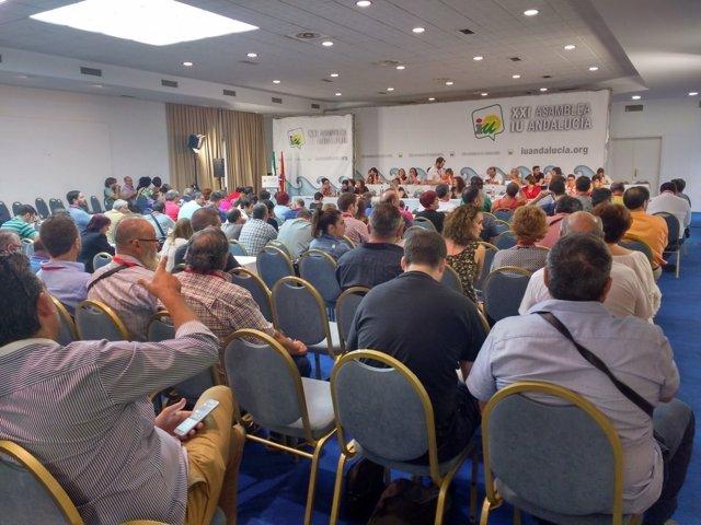 Asamblea de IULV-CA