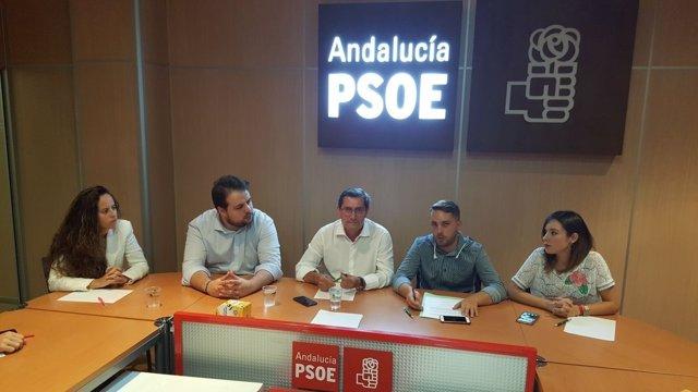 José Entrena, reunido con JSA