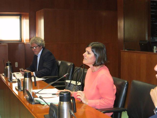 La diputada del PAR, Elena Allué, este lunes en las Cortes