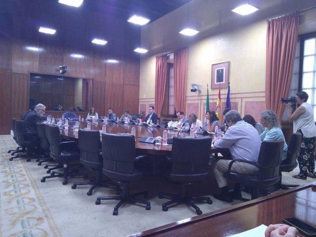 El Defensor del Pueblo Andaluz aplauda la ley andaluza del voluntariado