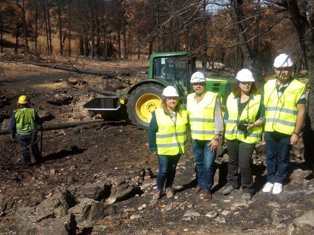 Vista a los trabajos tras el incendio de Segura de la Sierra