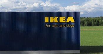 ¡Amantes de las mascotas! Ya está aquí la colección de muebles de Ikea para perros y gatos