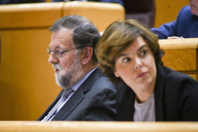 El PP abre hoy el plazo de presentación de candidaturas para suceder a Rajoy